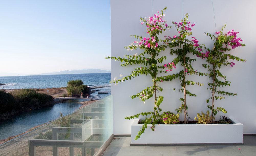 mediterranean-breeze-house-project-studio265-19