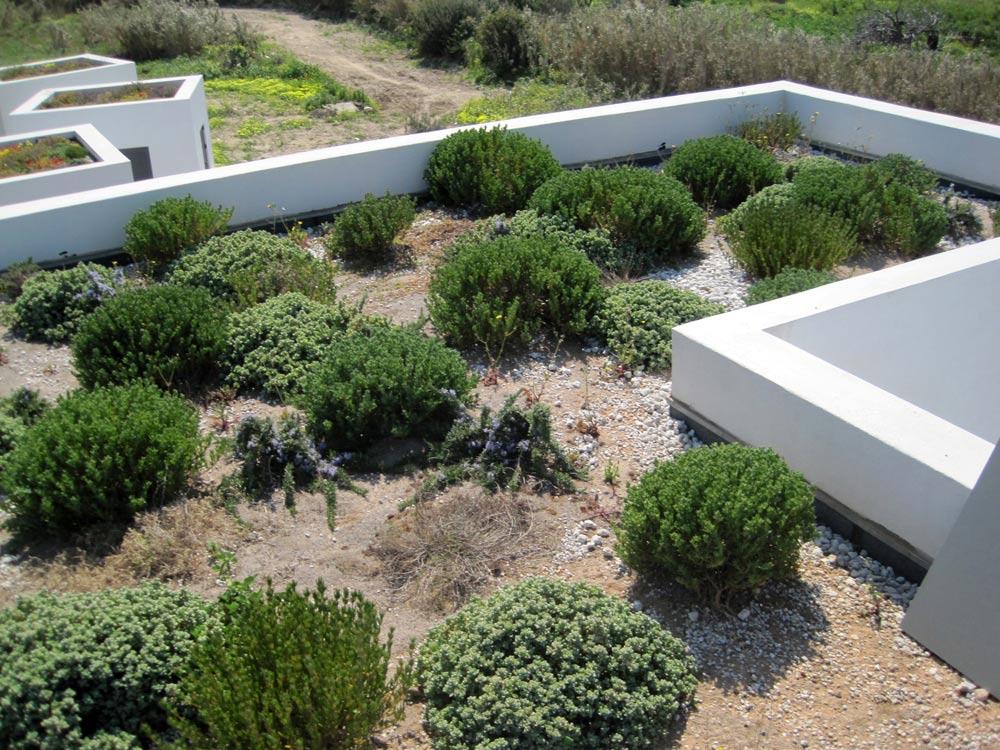 mediterranean-breeze-house-project-studio265-22