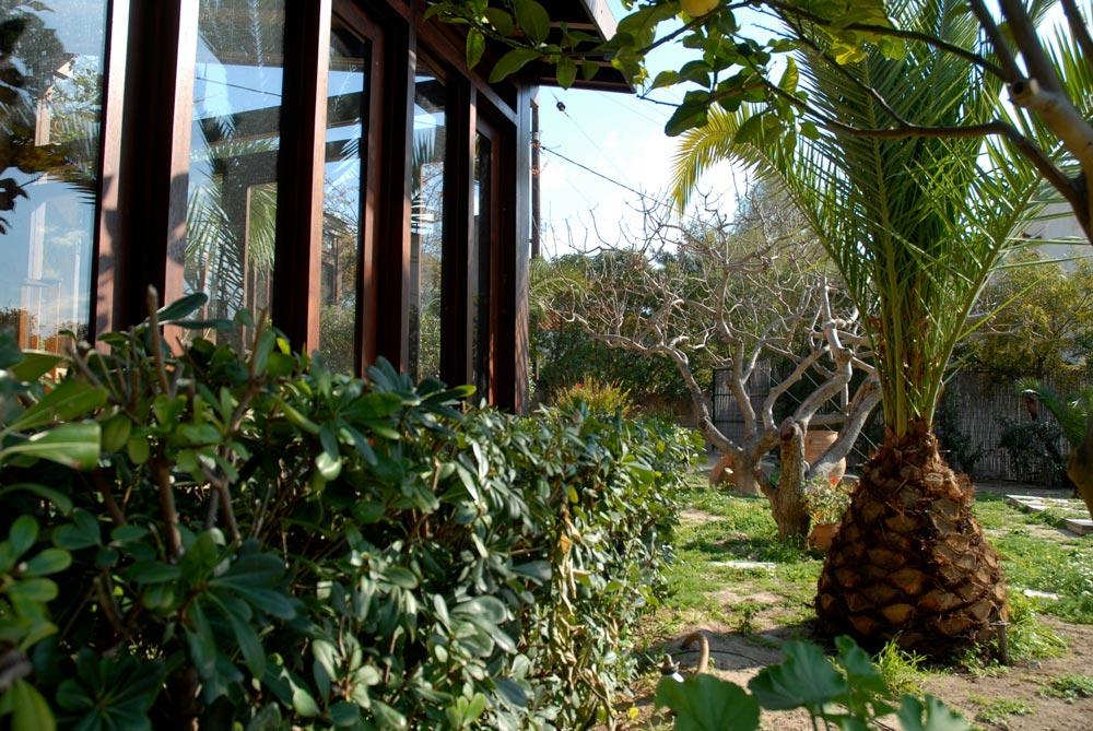 pistachio-trees-shadows-hotel-project-studio265-14