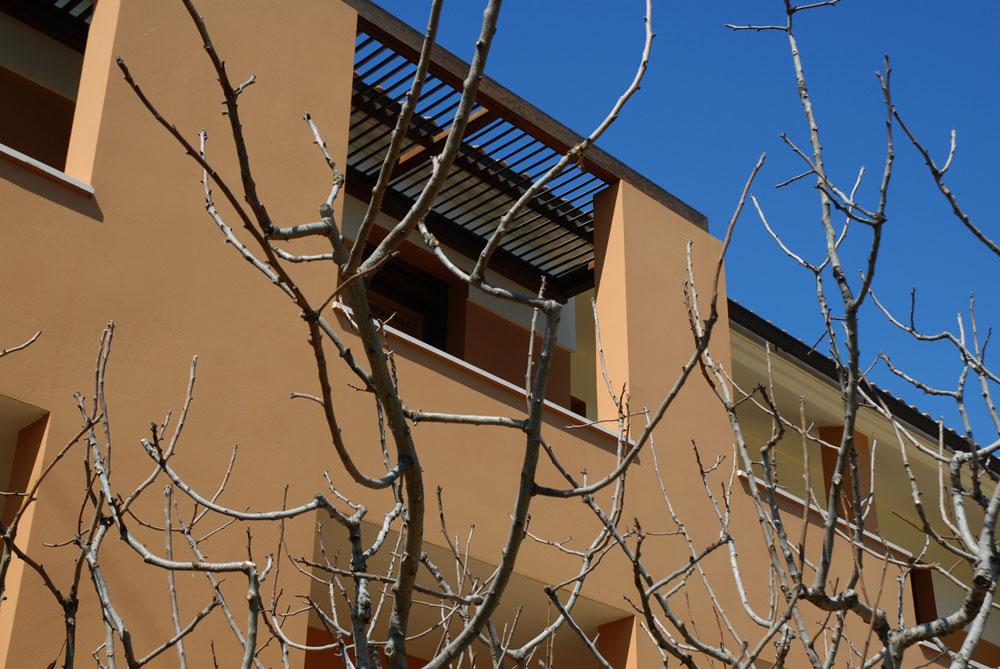 pistachio-trees-shadows-hotel-project-studio265-8